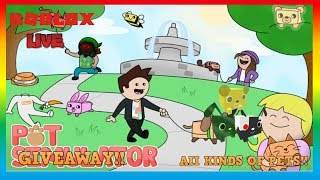 Roblox Pet Simulator and other games!