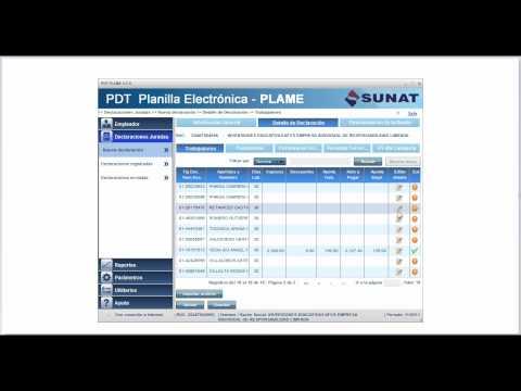Planilla Electrónica - PLAME