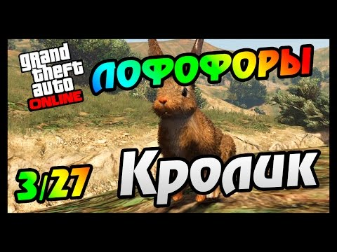 GTA 5 PS4 ЛОФОФОРЫ - КРОЛИК (+Карта)(3/27)