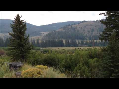 Scenery & Wildlife of Grand Teton & Yellowstone