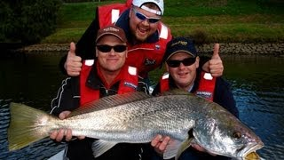 JEWFISH EPIC IN THE YARRA - Mulloway on YouFishTV