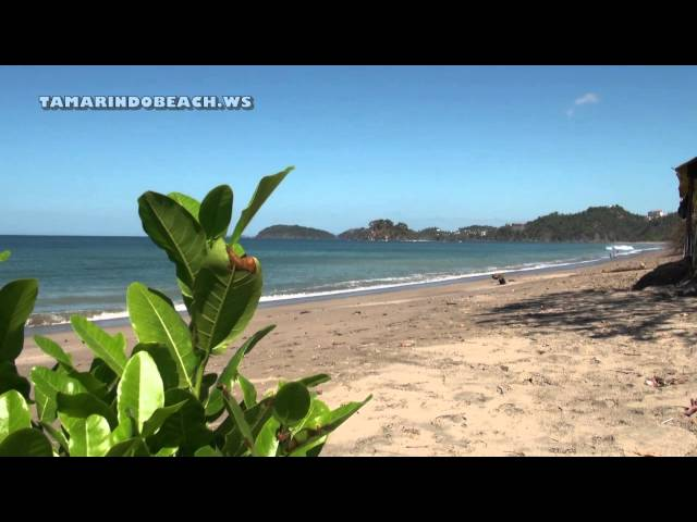 Playa Brasilito | Guanacaste Costa Rica | Beach Vacations