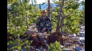 Killing a Bugling Bull in Late October - Wyoming General Season Elk Hunt