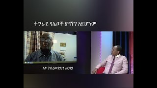 ESAT HR- Interview with Activist Ato Gebremedhin Araya. 19 Nov 2018