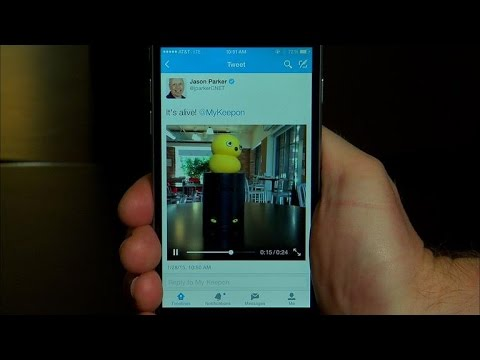 CNET How To - Share videos on Twitter