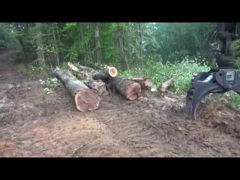 What sets TDK Logging Inc apart from others