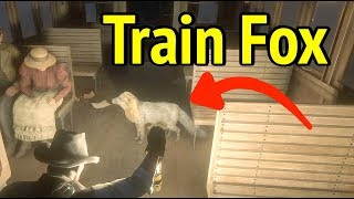 Meet Train Fox in Red Dead Redemption 2 (RDR2): Drive Coal Train
