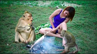 ( 100%  Real Funny Videos ) Top viral funny monkey clip 2017 and baby monkey meeting tourist