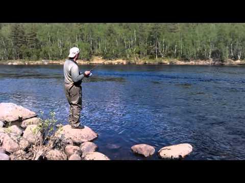 рыбалка в шонгуй