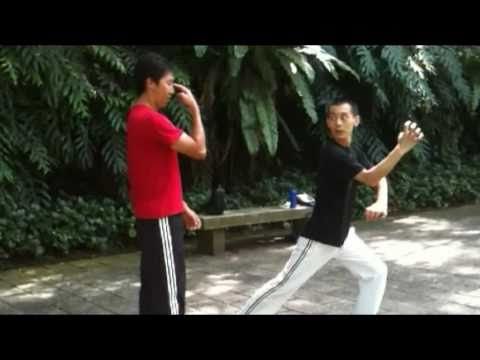 Hung Gar San Shou Training- 洪拳散手 Image 1
