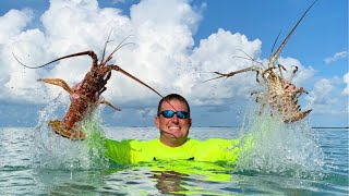 How to {CATCH CLEAN COOK} Lobsters, in totally New Area - Florida Keys