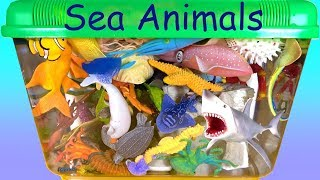 Learn Colors with Wild Animals Toys Sharks in Blue Water Aquarium Toys For Kids