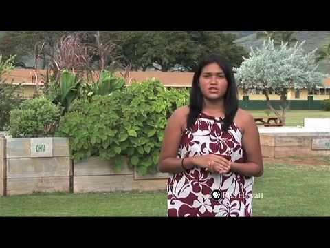 PBS Hawaii - HIKI NŌ: Ka Waihona o ka Naauao - Shaka
