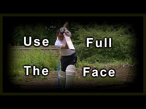 Hd Cricket Coaching Batting Drills practice training & Visual Lessons On How To Play On Drives video