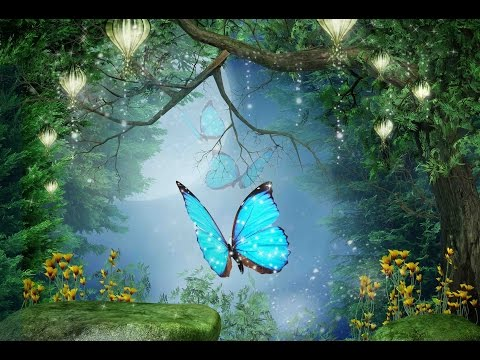 "Download Peaceful Music, Relaxing Music, Instrumental Music  ""Enchanted Forest"" by Tim Janis"