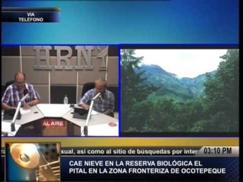 TVC La Tarde-