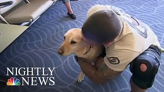 Meet The Woman Reuniting Vets With Their Retired Service Dogs | NBC Nightly News