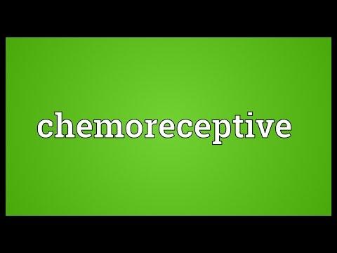 Header of chemoreceptive