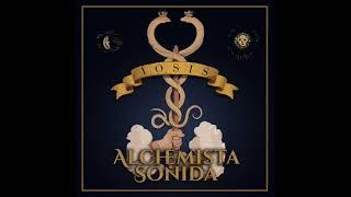 Alchemista Sonida - Fermentation