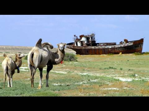 Dispatch: Geopolitics of the Aral Sea