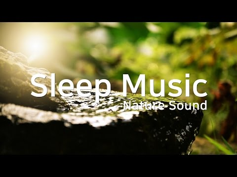 잠잘 때 듣는 음악 × 자연 소리ㅣ중간광고없음 🌱 Instrumental Sleep Music × Nature SoundㅣRelaxing mind, 숙면, 불면증 완화