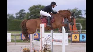 Pension chevaux haras st léger-écurie du fief