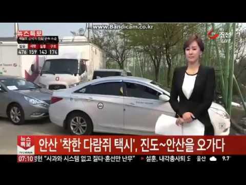 세월호 관련 소식을 전하다 눈물 흘리는 아나운서.