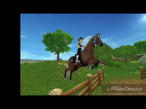 Sso új alap lovak kárpátia örökségem