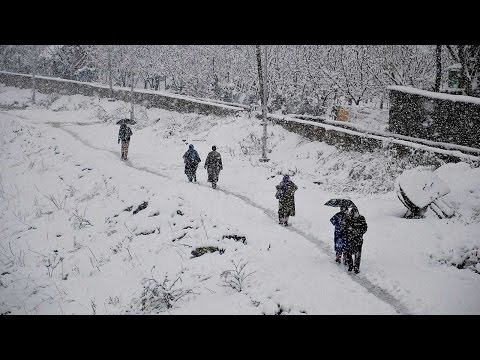 Heavy Snowfall in Japan injures 169 people