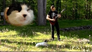 Cat Metal Band - Meow Metal