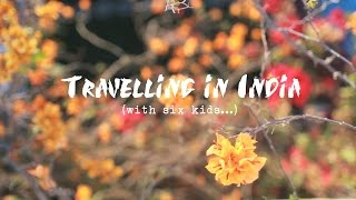 Intrepid Family Adventure - India