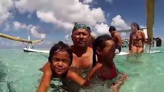 Sortie Shark Feeding Polynésienne des Eaux
