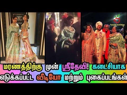 மரணத்திற்கு முன் ஸ்ரீதேவி! கடைசியாக எடுக்கப்பட்ட வீடியோ மற்றும் புகைப்படங்கள் !!  TamilCineChips thumbnail