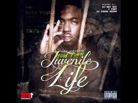 Down Bad Bitch - (Mula Pugh - Juvenile Life)