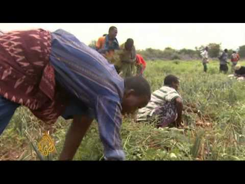 Worsening conflict could affect Somalia aid