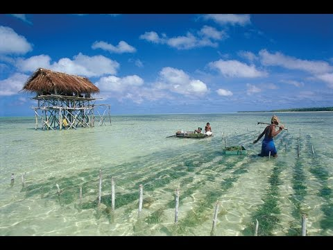 Kiribati Island Travel 2015