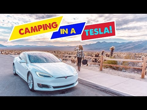 TESLA CAMPER MODE! | Camping at Joshua Tree | Tesla Road Trip 5000 Miles (PART 2)