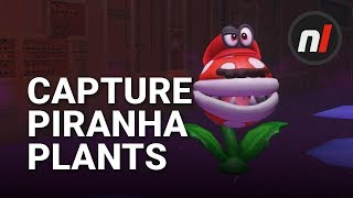 Yes, You CAN Capture Piranha Plants in Super Mario Odyssey