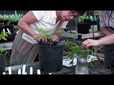 Cosumnes River College - Horticulture