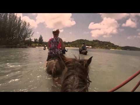 Havana Beach Club Roatan - Horseback Riding
