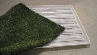 How To Make an Indoor / Outdoor Pet Bathroom, Starring Dash the Beagle