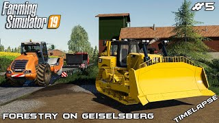 Building road | Forestry on Geiselsberg | Farming Simulator 19 | Episode 5