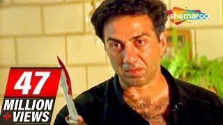 Sunny Deol scenes From Salaakhen (1998) - Raveena Tandon - Anupam Kher - Hit Hindi Movie