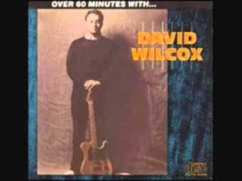 David Wilcox - Too Cool