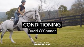 Conditioning: David O'Connor
