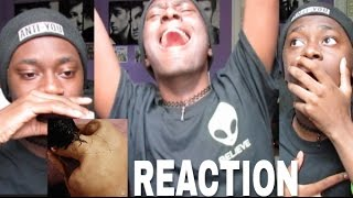 Download Lagu Harry Styles Album Reaction (I Cried and Died) Gratis STAFABAND