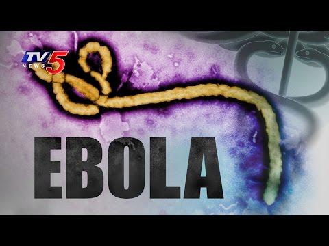 Ebola Virus Attack on Software Engineer | Hyderabad : TV5 News