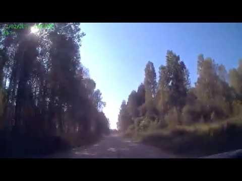 Дорога к озеру Линёво (Омская область)