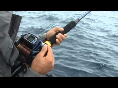 Deep sea fishing .. Savannah GA USA with Daiwa Tanacom Bull Power Assist Reel