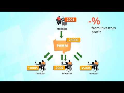 Видео для бизнеса. Создание рекламных видеороликов. Инфографика для форекс.